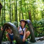 C'era una volta… il Parco di Pinocchio